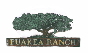 Puako-Ranch-Logo update